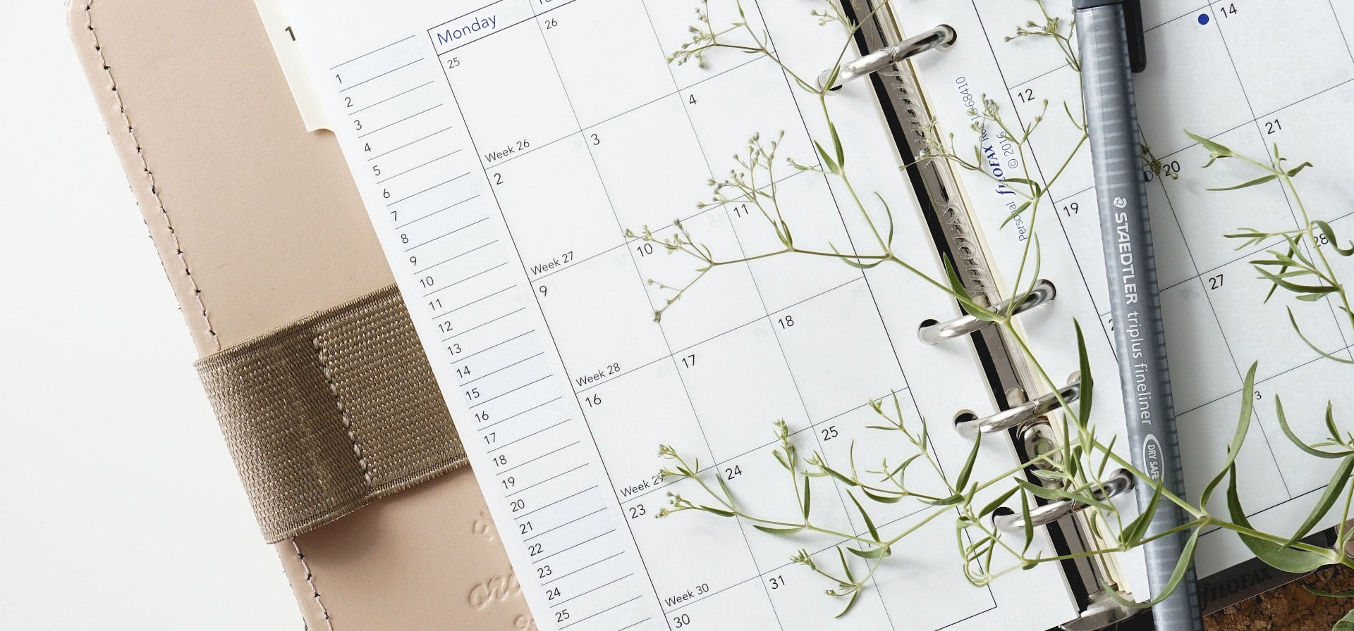 Features And Special Events We have some special dates arranged for you throughout the year, seasonal and occasional and big discount days get the news you want on this blog