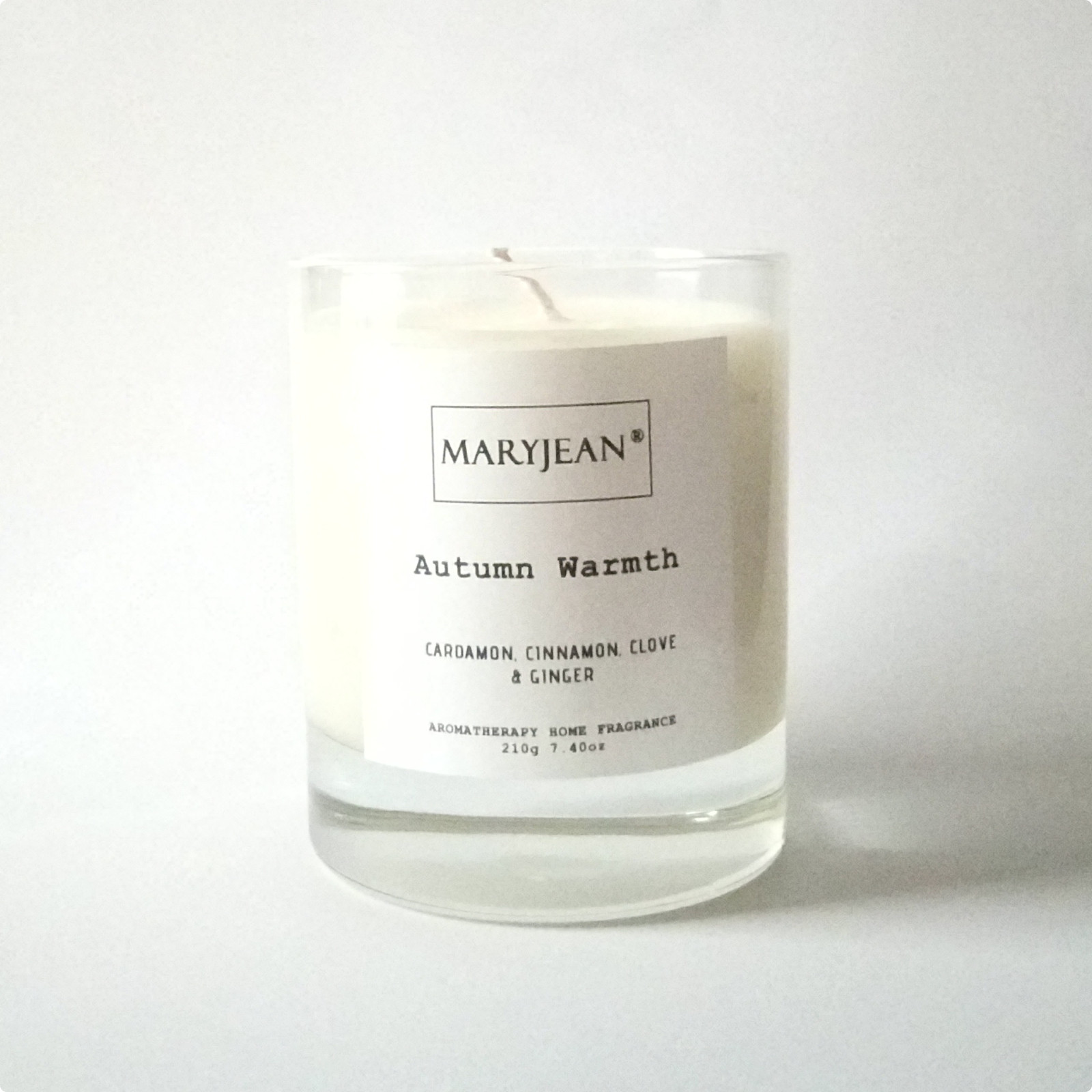 Autumn Home Seasons Fragrance hand poured large Luxury Soy candle