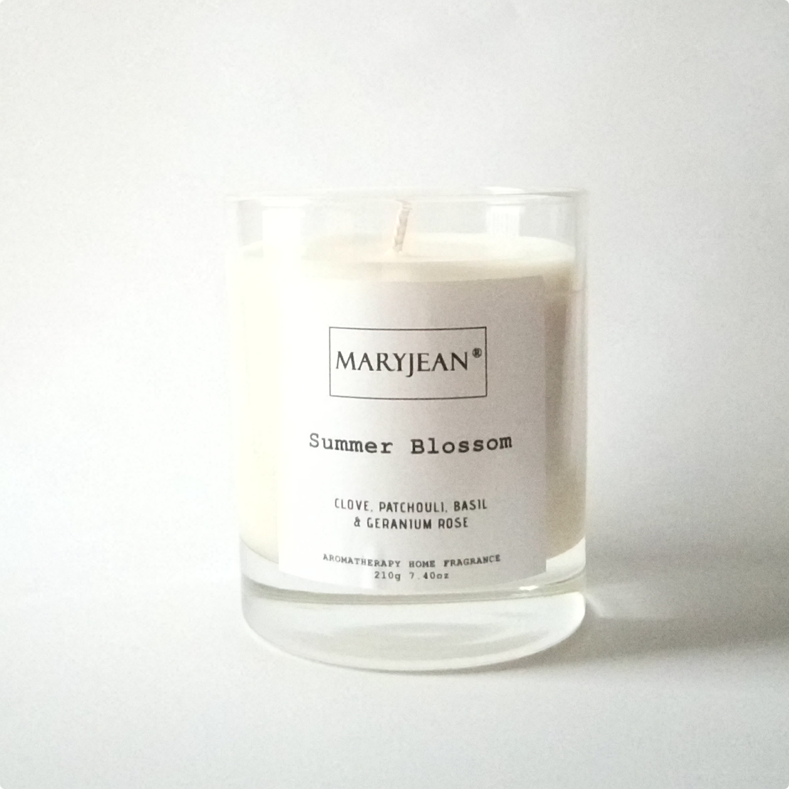 Summer Home Seasons Fragrance hand poured large Luxury Soy candle