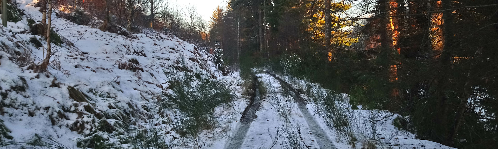 Drummuir Loch Park in late winter 2018, off road trail through