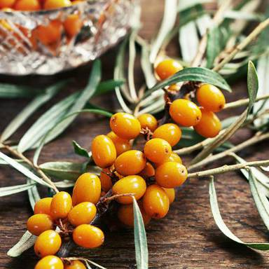 As well as increasing circulation, for healthy, glowing skin Sea Buckthorn oil can protect your skin from premature ageing
